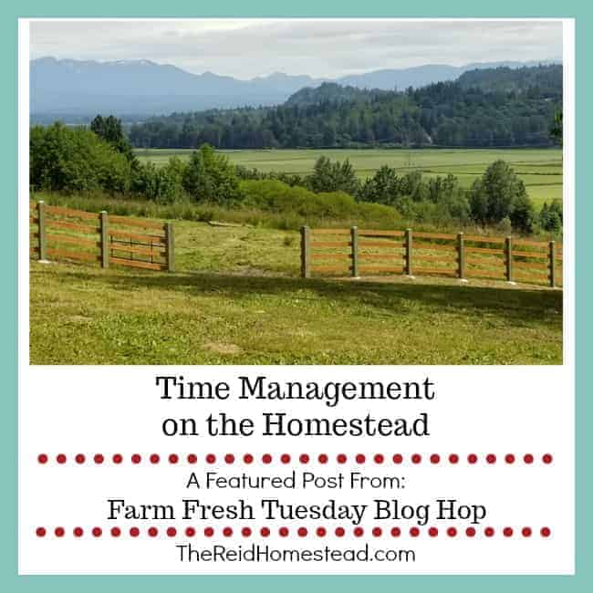 Time Management on the Homestead