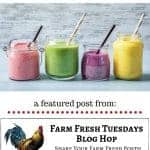 4 types of smoothies with text overlay favorite homestead smoothie recipes