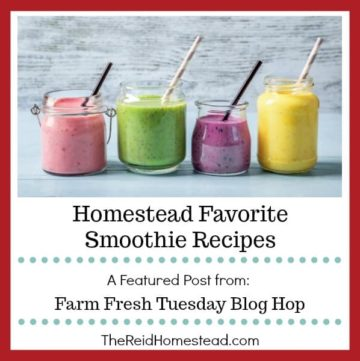 4 types of smoothies with text overlay homestead favorite smoothie recipes