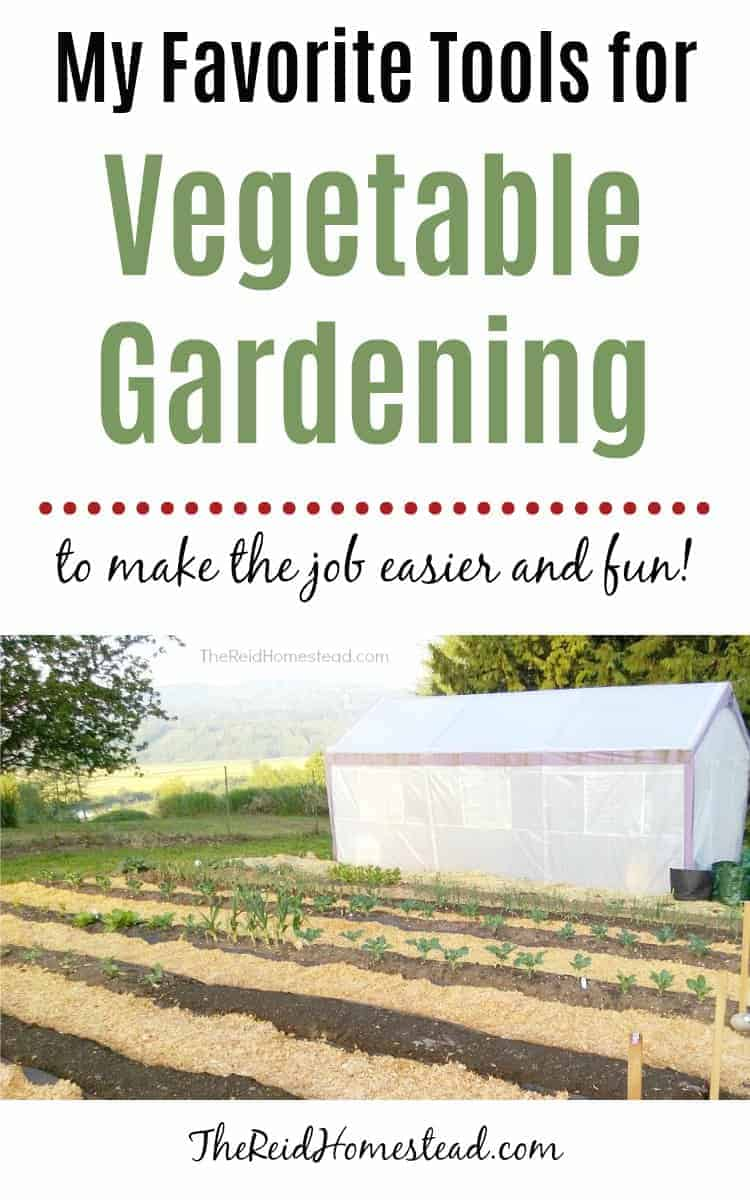 rows in the vegetable garden prepped for spring planting with greenhouse beyond and text overlay My Favorite Tools for Vegetable Gardening