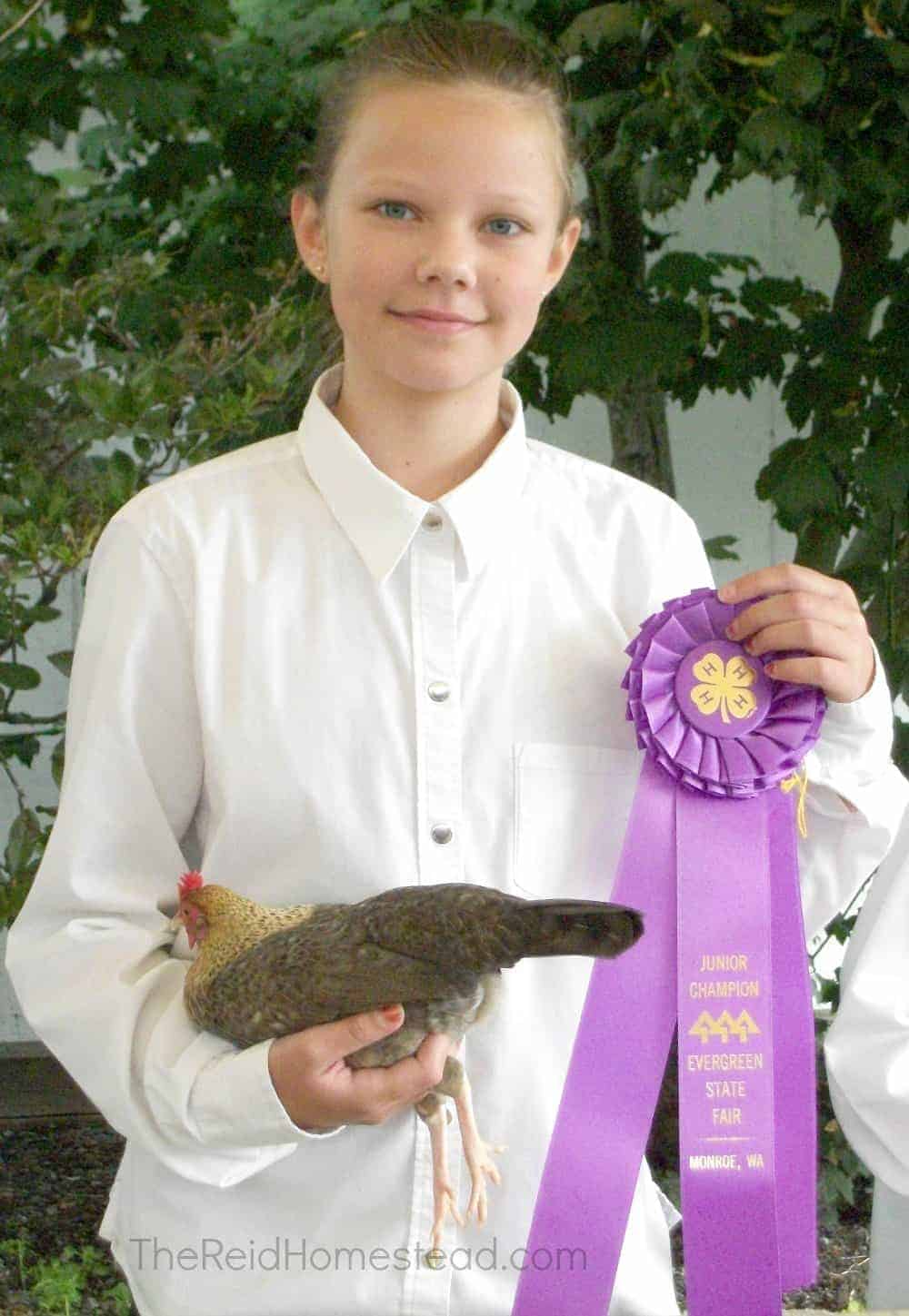 4-h girl holding chicken and junior poultry champion ribbon