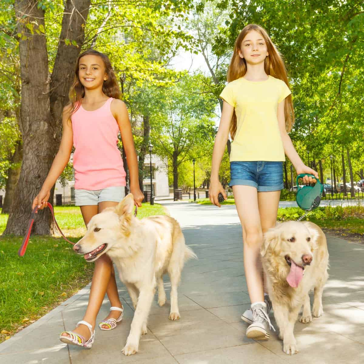 2 girls walking dogs in the park