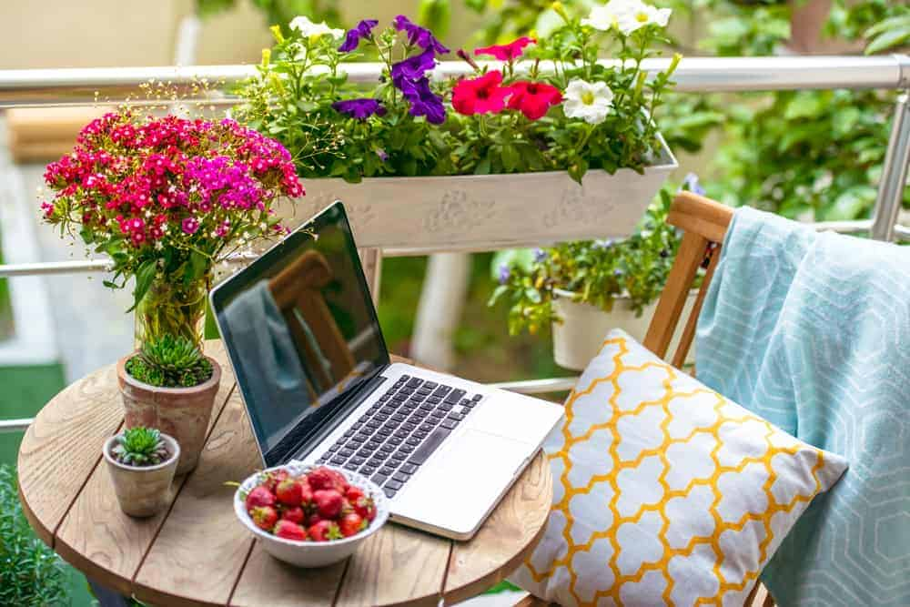 laptop on table on the porch surrounded with pots of flowers and a bowl of berries