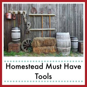 garden tools, barrels and bales of hay against a barn with text overlay Homestead Must Have Tools