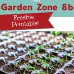 photo of newly germinated seedlings in seed flat with text overlay A guide for Starting Seeds in Garden Zone 8b - Free Printable!