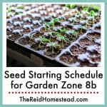 photo of new seedlings germinating in a seed flat with text overlay Seed Starting Schedule for Garden Zone 8b